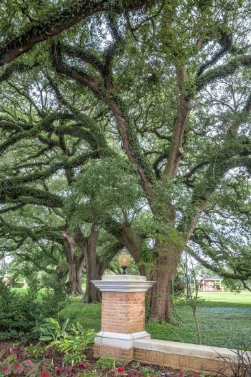 20th century oaks_9477